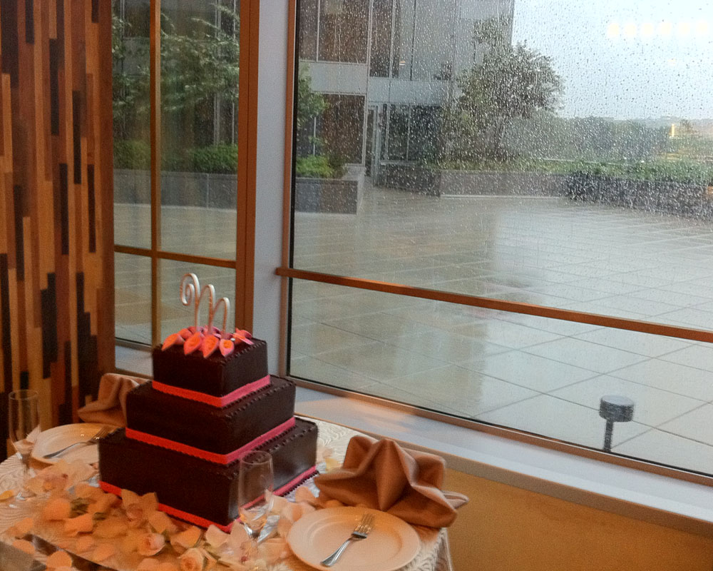 Craig & Erica's cake, with Hurricane Irene