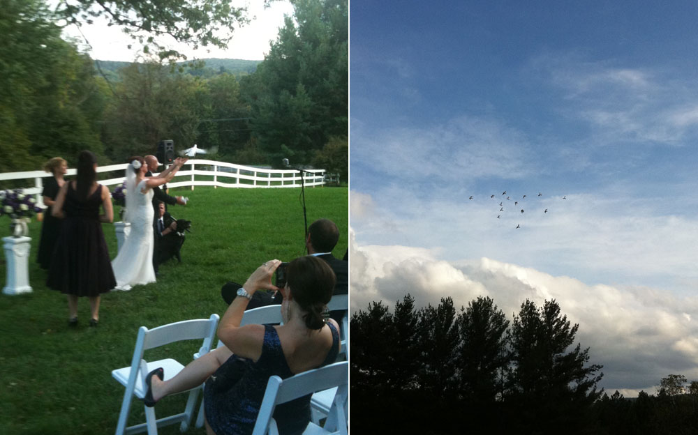 Lori & Dejan's ceremony, release of the doves