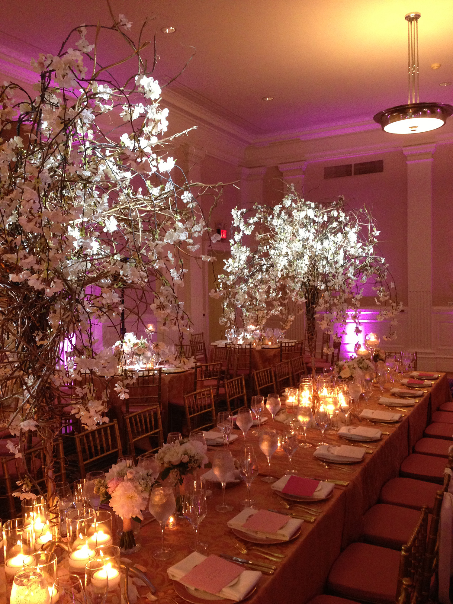 Uplighting & Pinspotting at Carnegie Institute