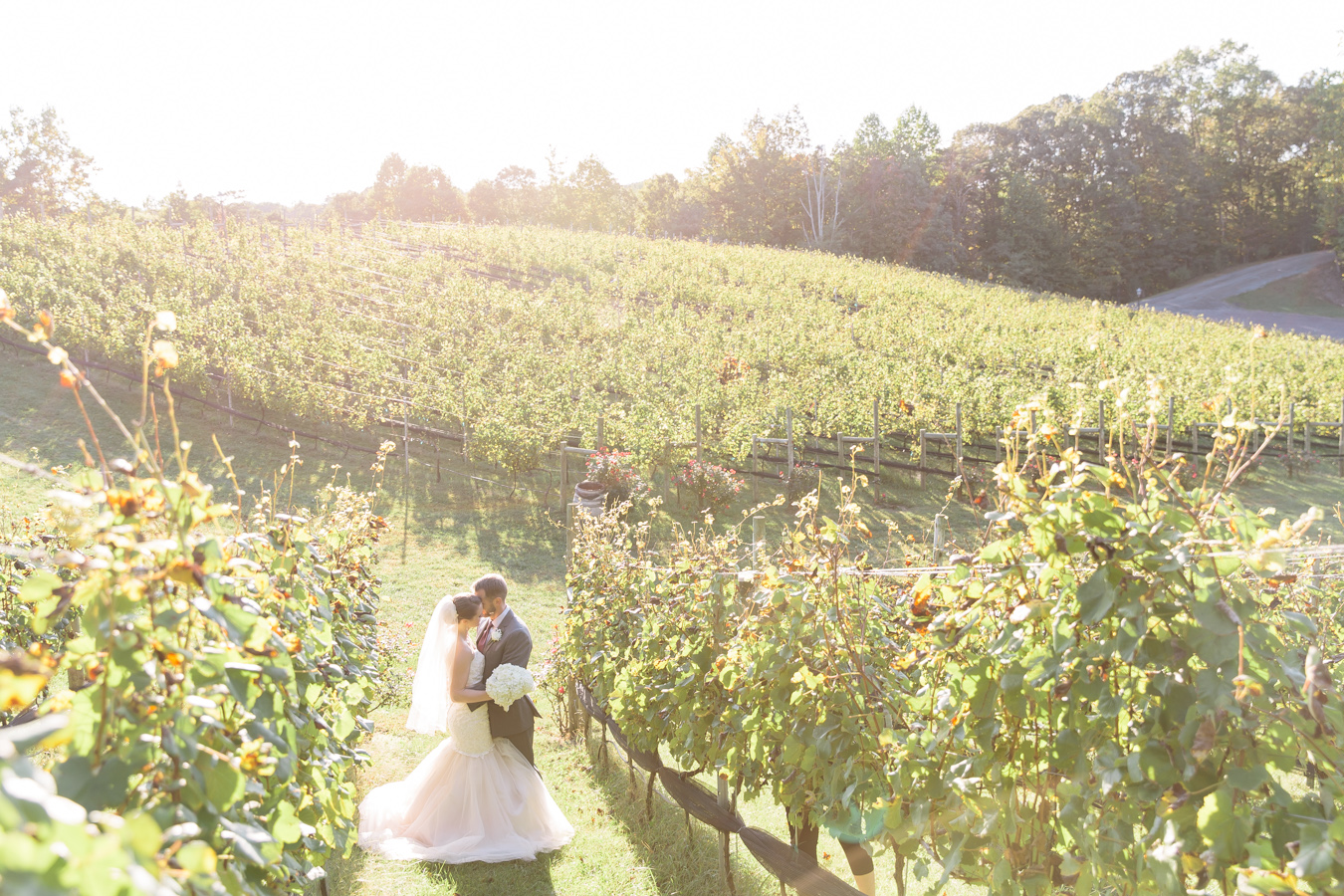 Magnificent sunlight for Renae & JC's Potomac Point Winery Wedding - Bonnie Sen Photography