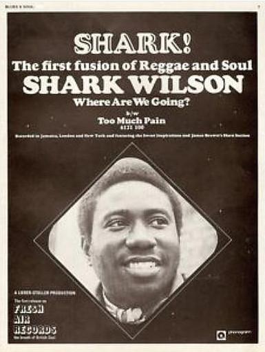 Shark Wilson